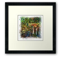 The Atlas Of Dreams - Color Plate 60 Framed Print