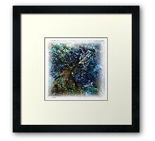 The Atlas Of Dreams - Color Plate 62 Framed Print