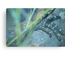 Monster Claw Canvas Print
