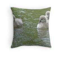 Three Black Swan Cygnets Throw Pillow