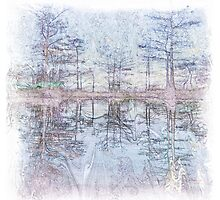 The Atlas Of Dreams - Color Plate 45 by Richard Maier