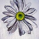 Daisy by jomash