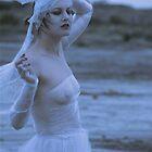 the veil by aglaia b