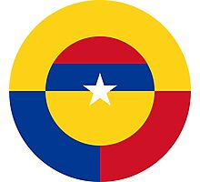 Roundel of the Colombian Air Force Photographic Print