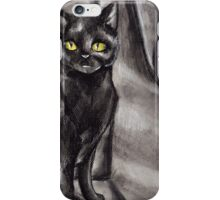 Black Cat on Stairs- Charcoal Drawing iPhone Case/Skin