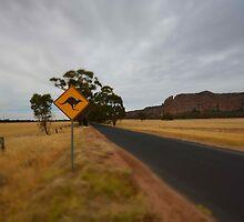 Roo Crossing by Joshua Westendorf