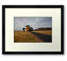 Roo Crossing Framed Print