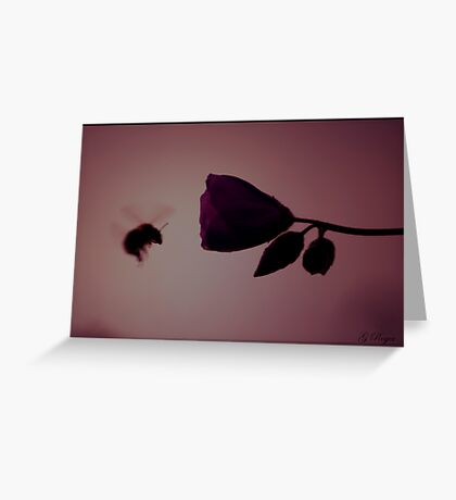 Last One Today Greeting Card