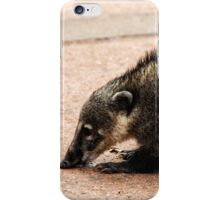 Coati - Nose to the Ground iPhone Case/Skin