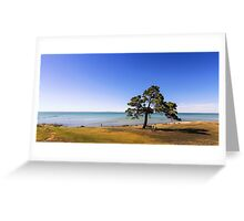 The Dell - Clifton Springs Greeting Card