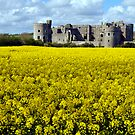 CAREW CASTLE, WALES. UK. by kfbphoto