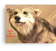 Save The Gray Wolves Canvas Print