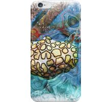 The Atlas Of Dreams - Color Plate 69 iPhone Case/Skin