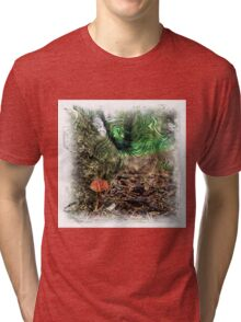 The Atlas Of Dreams - Color Plate 67 Tri-blend T-Shirt