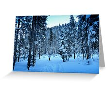 Donner Memorial State Park Greeting Card
