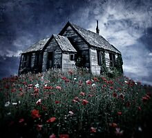 Little hut in a poppy field by Kurt  Tutschek