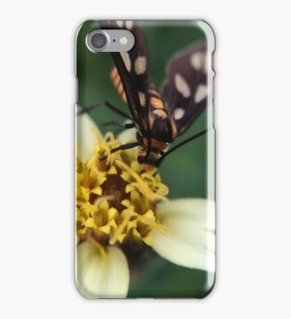 Macro Photography Insect on flower iPhone Case/Skin
