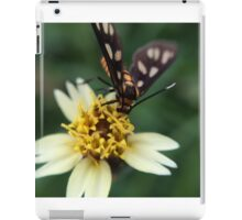 Macro Photography Insect on flower iPad Case/Skin