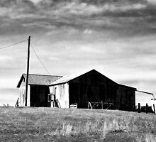 the shearing shed by StanB
