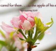 The apple of his eye . . . by Bonnie T.  Barry