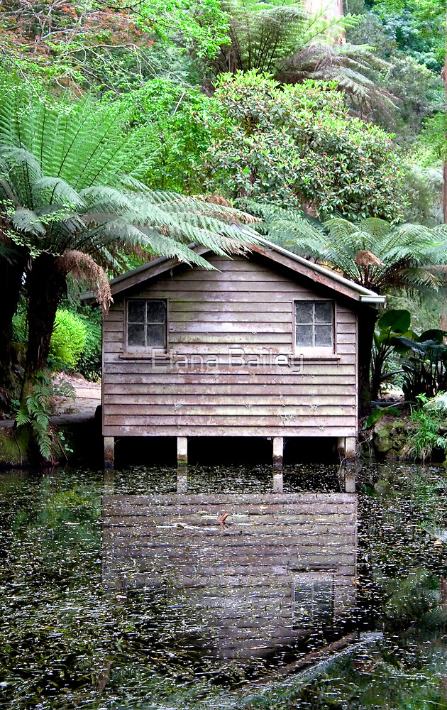 The Boathouse in spring, Alfred Nicholas Gardens by Elana Bailey