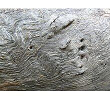tree fingerprint Photographic Print
