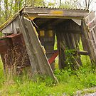 Utility Shed Seen Its Better Days by ericseyes