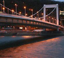 Erzsébet Bridge by adamgrell
