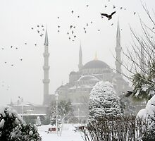 Blue Mosque by adamgrell