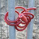 De Fence by Matt Roberts