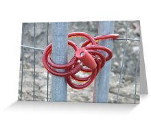 De Fence Greeting Card