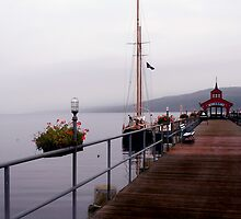 Seneca Lake Pier by Cheri Perry