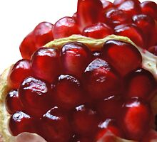 Pomegranate Seeds by CinB