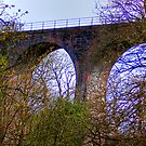 Almondell Viaduct II by Tom Gomez