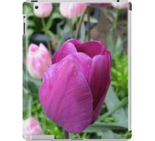 Pink and Purple Tulips iPad Case/Skin