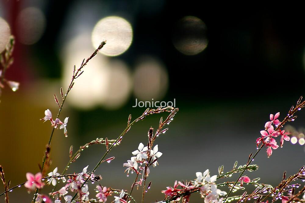 Morning Soak by Jonicool