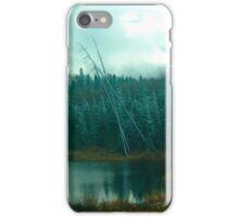 Evergreens of Northern Ontario iPhone Case/Skin