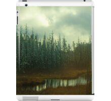 Northern Ontario iPad Case/Skin
