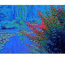 Monet's garden in blue Photographic Print