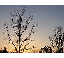 Afternoon Sunset Photographic Print
