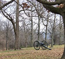 Civil War - Memory of Times Long Forgotten by Kay  G Larsen