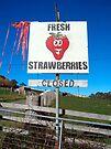 Fresh Strawberries by John Douglas