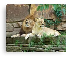 The Royal Couple Canvas Print