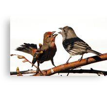 Mating Rituals Canvas Print