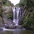 Piroa Falls, Waipu Gorge NZ by Andrew S