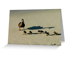the family beach day - Lord Howe Island Collection Greeting Card