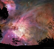 Nebula In My Backyard II by dale rogers