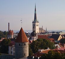 Rooftops Of Tallinn by Malcolm Snook
