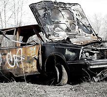Rust Waggon by Julene Mendenhall