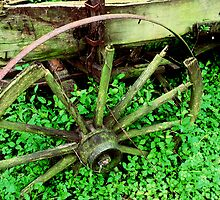 Wagon in the Green by Rodney Williams